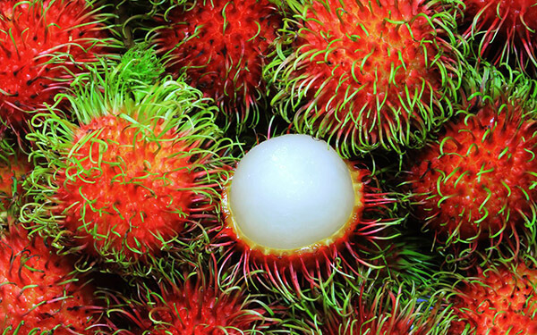 fruits rambutan