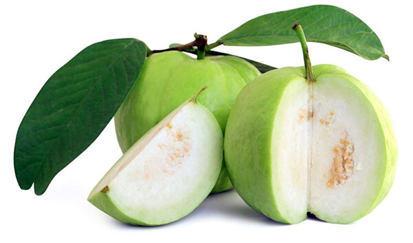 fruits Guava