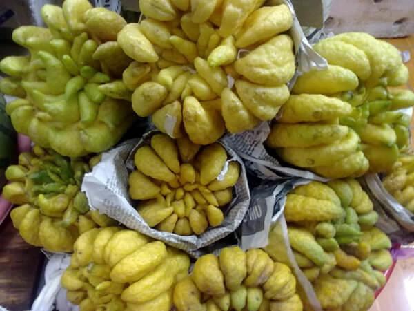 fruits buddha hand