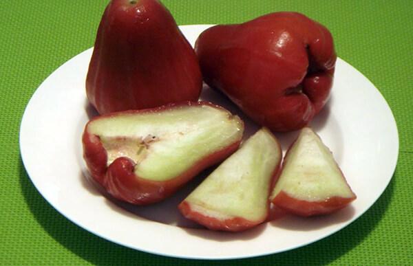 fruits java apple 1