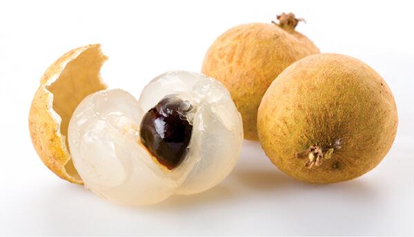 fruits longan