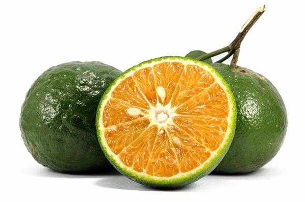 fruits orange cam sanh