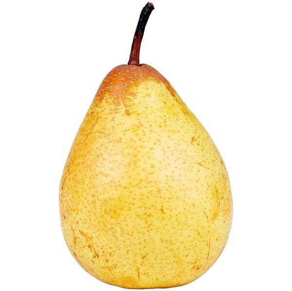 fruits oriental pear