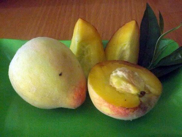 fruits peach 1
