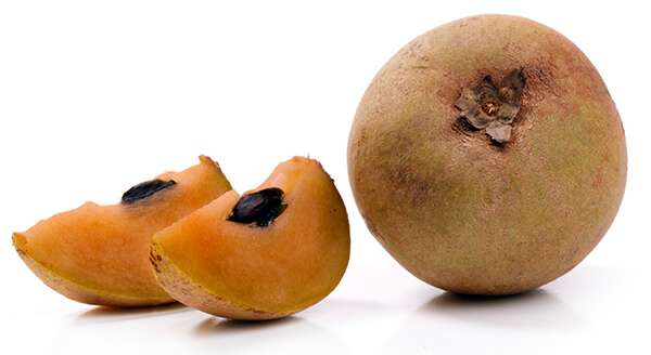 fruits sapodilla
